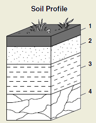 Soil Profile Diagram For School | www.pixshark.com ...